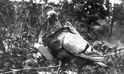 WW2 Photogrammetry Surveying